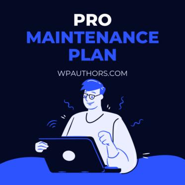 Pro WordPress maintenance plan